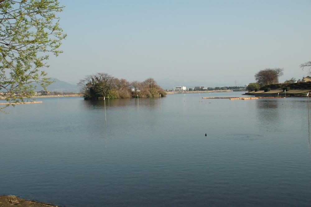 江津湖湧水
