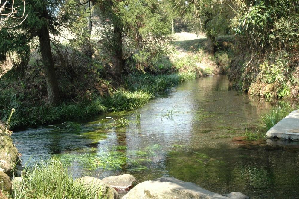 南阿蘇村湧水群