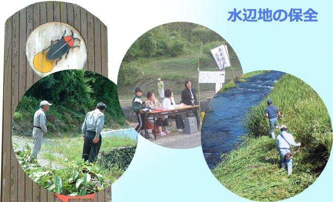 水辺地保全への貢献