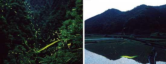 横居木地区公民館(葦北郡芦北町)